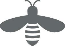 iron-bee-1