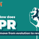 Discover how PR can move from evolution to revolution